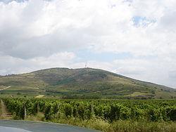Kopasz-hegy