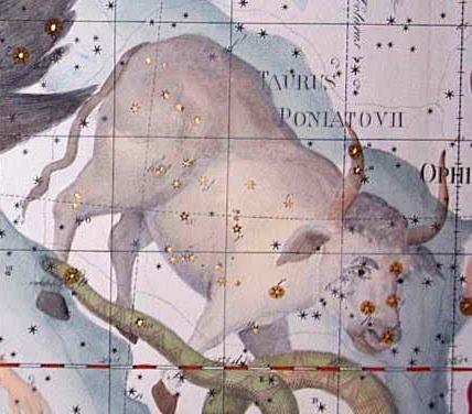 Bika csillagkép