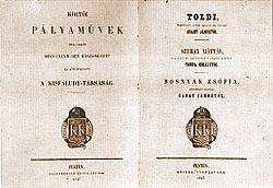 Toldi (1847)