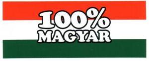 100magyar