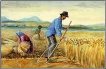 aratás