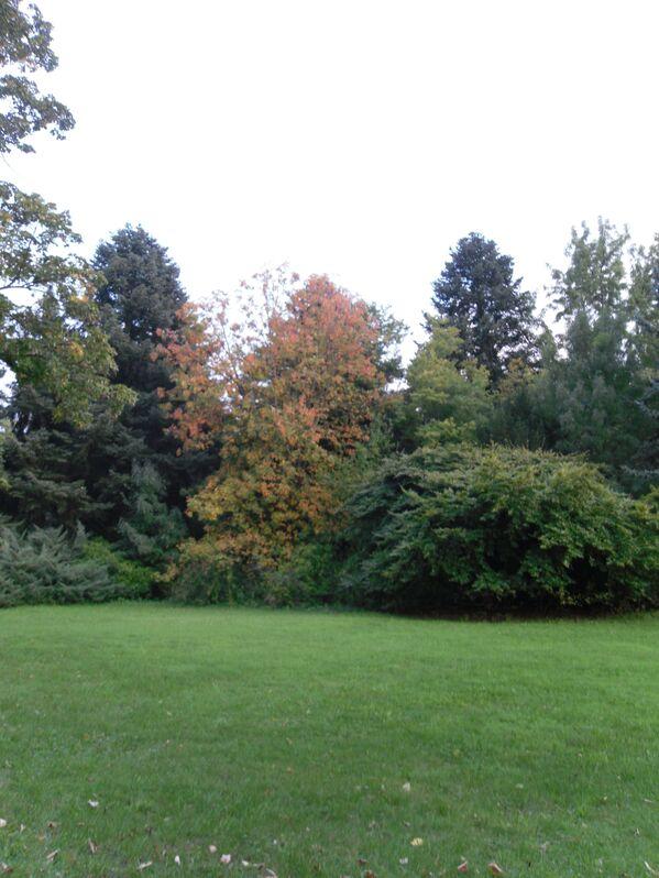 Szarvasi Arborétum ősszel