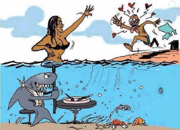 Cápa csali